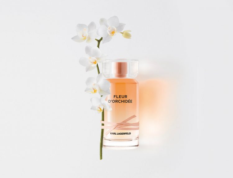 Parfum Karl Lagerfeld ©photo Antonin Bonnet