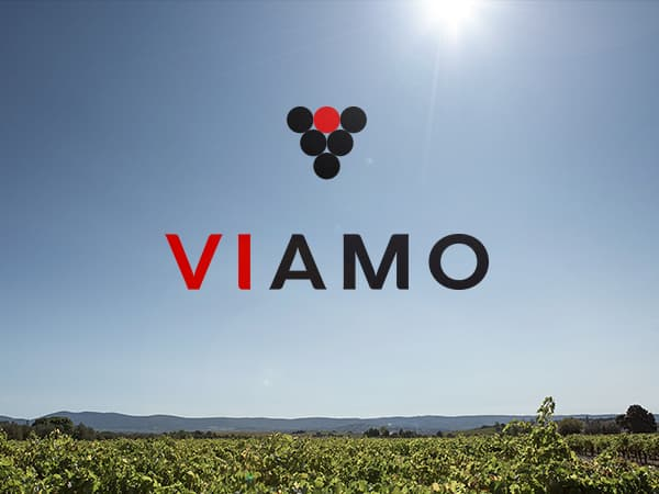 Logo Viamo ©design by HappyFactoryParis